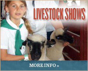 ButtonTwo-LivestockShows_0